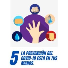 Carteles de prevención del COVID-19